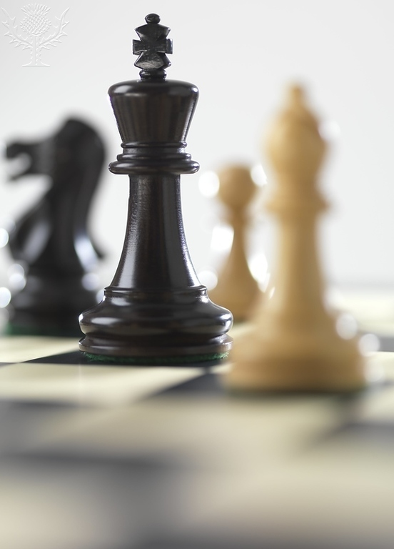 In focus is a black King. Out of focus to the King's left is the black Knight. To the King's right in the background is a white Pawn and out of focus in front of the King is the white Bishop.
